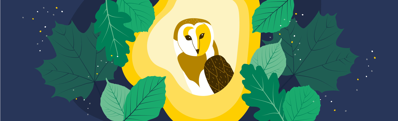 La Kanopée : création d'une identité